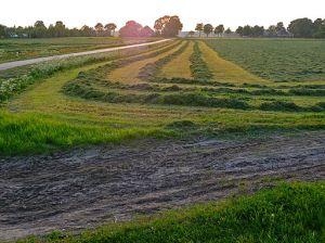 Ethics Land Use